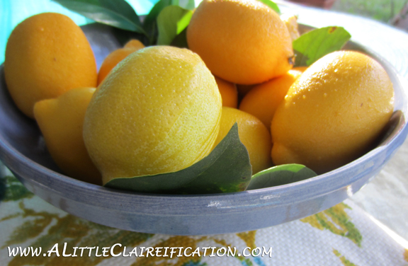French Lemon Tarts with ALittleClaireification.com