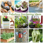 All Things Gardening | 100+ Fabulous Gardening Ideas To Welcome Summer
