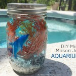 Mini Mason Jar Aquariums | Summer In Jars Series