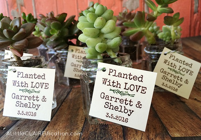 Succulents In Jars Wedding Favors - includes free printable labels
