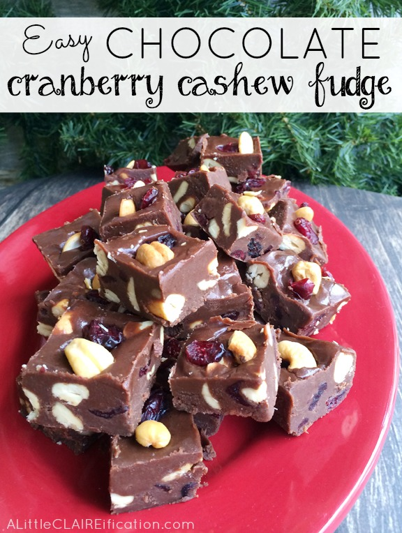 Easy Chocolate Cranberry Cashew Fudge - perfect for holiday gift giving!