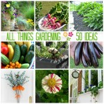 All Things Creative: The Gardening Edition | 50 Gardening Ideas