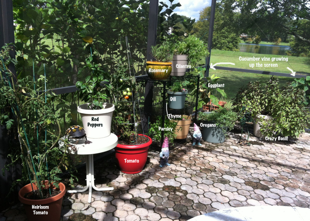All things gardening 100 fabulous gardening ideas to for Things used for gardening