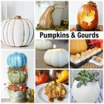 Exclusive Fall Collection:  All Things Pumpkins & Gourds