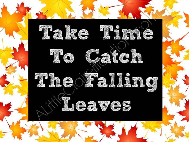 Free Falling Leaves Chalkboard Printable