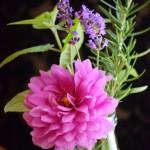 Using Herbs In Flower Arrangements